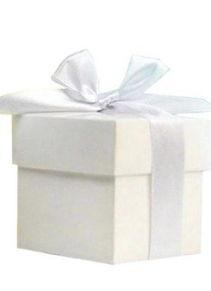 Pack 10 cajitas Blancas con Lazo