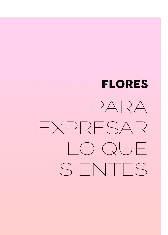 Flores para expresar lo que sientes